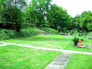 Wangen Pilotfriedhof für Baumgräber – Bezirksbeirat Stuttgart Wangen 21.7.2014