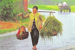 Bild aus Vietnam